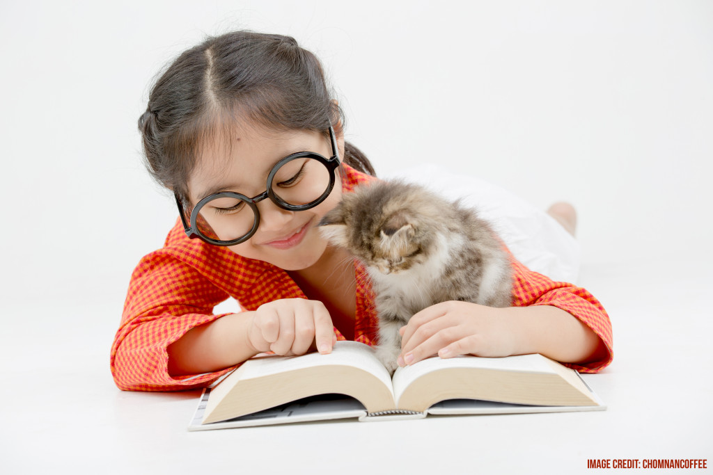 Little Asian girl reading a book with lovely Persian kitten on i