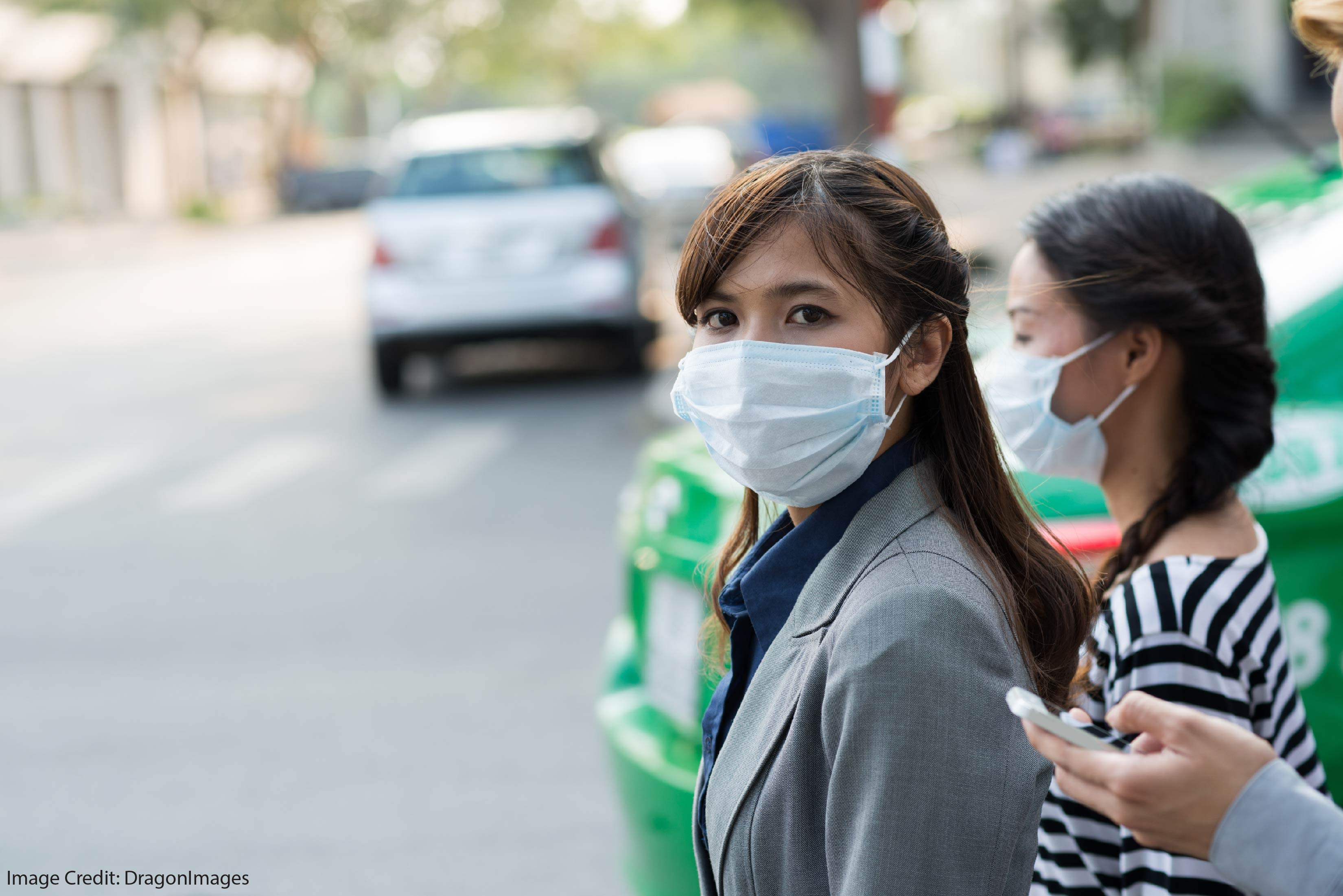 pollution harms working memory
